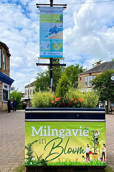 Milngavie high street banners